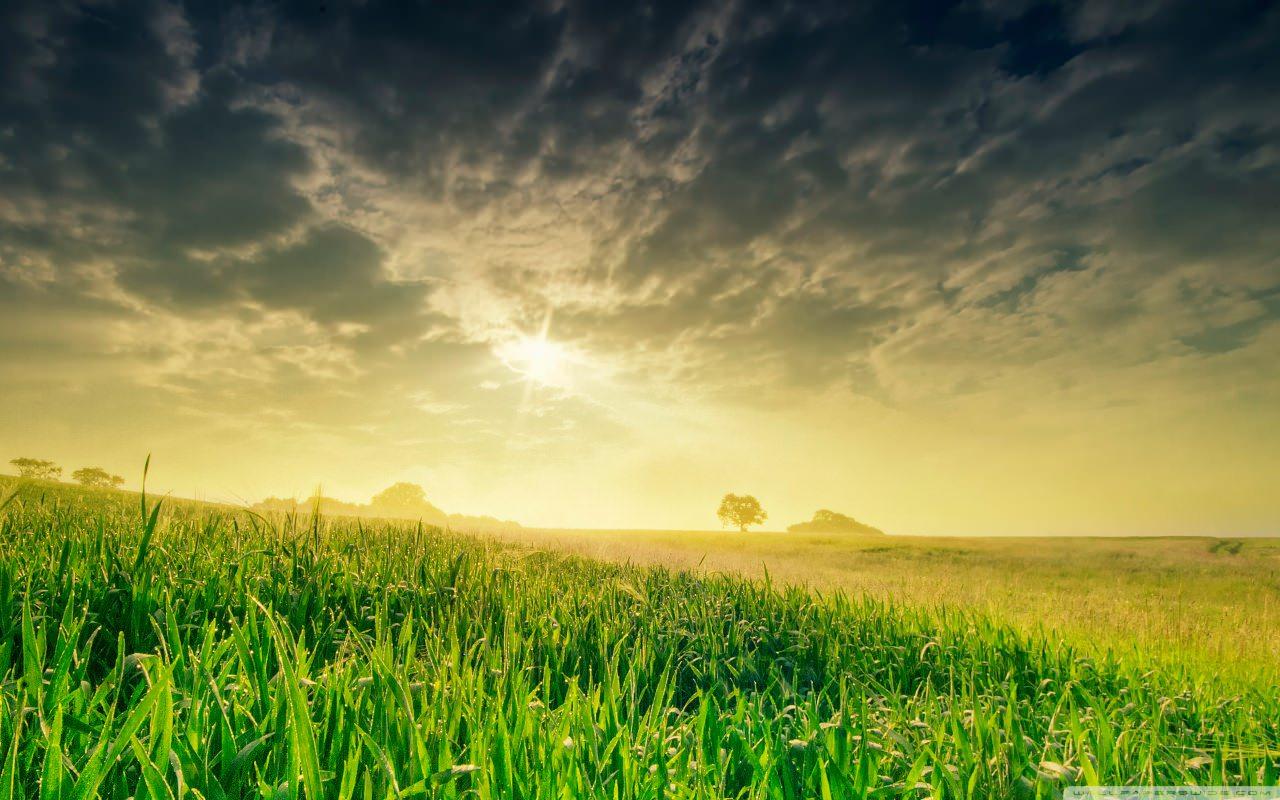 زمانی برای مهربانی با طبیعت