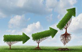 چند راهکار مفید برای افزایش سودآوری برند از طریق وب سایت