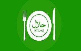 ضرورت استفاده از لوگوی مشترک ایران و آفریقای جنوبی برای برند حلال در سطح جهانی